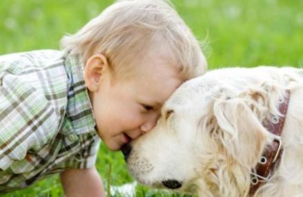 Die beide Hunderassen für die Kinder